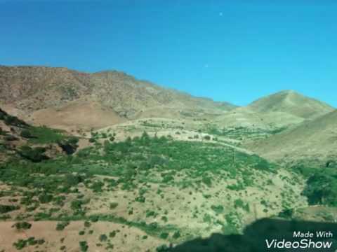#nature #plants #beautiful #maroc #morocco #boulgou #taliouine #taroudant #wonderful #green #earth