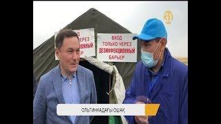 Ақмола облысында Сібір жарасының таралуына не себеп?