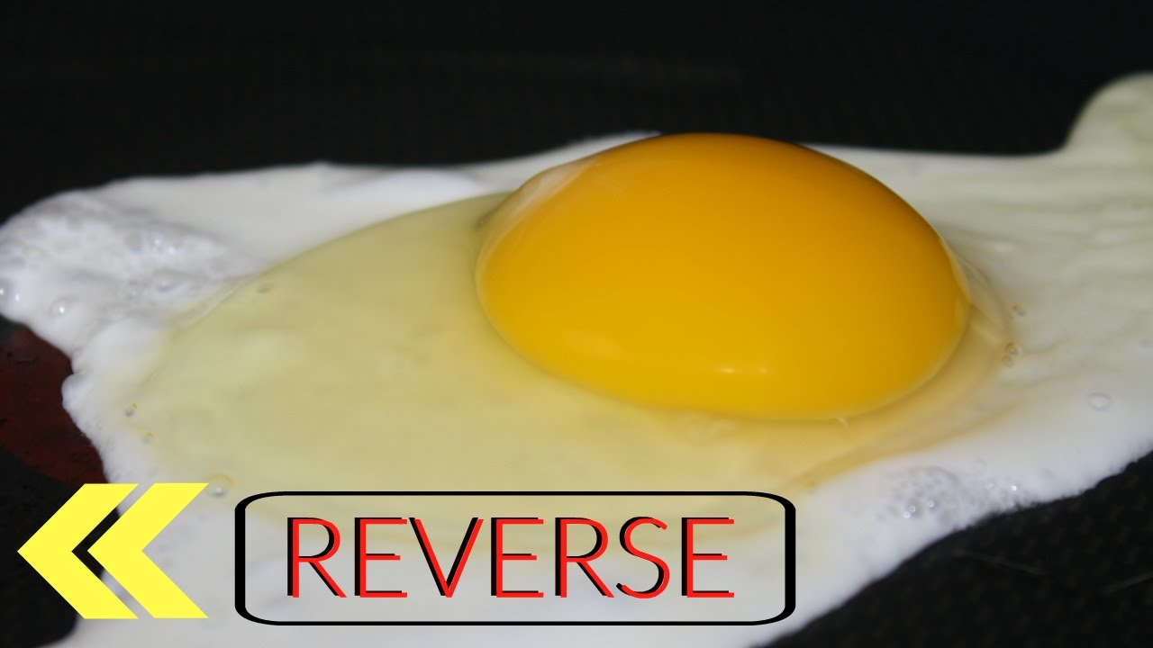 Image result for reverse egg yolk