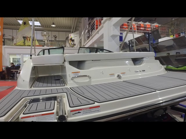 Sea Ray 190 SPXE 50 Jahre Edition (Boote Pfister)
