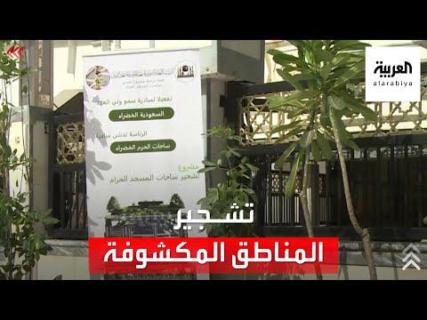 رئاسة شؤون المسجد الحرام تبدأ عمليات تشجير المناطق المكشوفة