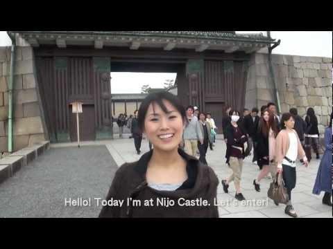 Nijo Castle / 二条城