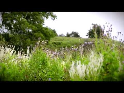 Видео Экология подмосковье