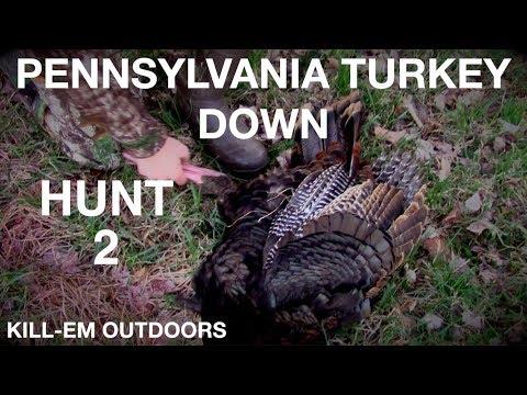 Bird Down!! PA Turkey Hunt Day 2