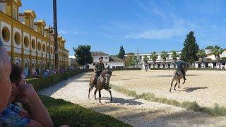 Jerez de la Frontera, Spain - Andalusian Horse show, museum, beautiful grounds