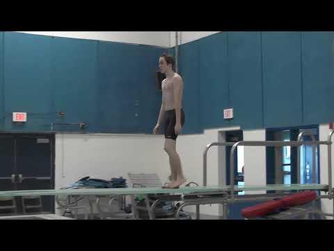 Belfast Area High School's Gary Moline diving