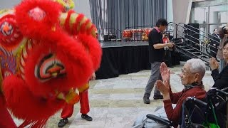 nyccc arts brookfield year of the monkey celebration 2 6 16 master tony chuy s lion dance