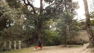 鷺森神社  ( 武道 : Martial Arts 2019.04.18 @ 15:52 )
