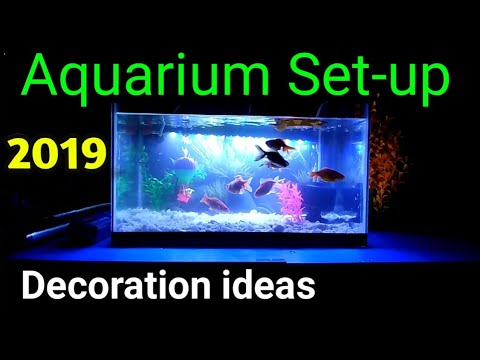 aquarium decoration ideas #Aquarium setup & Decoration ideas 2019 Part 3