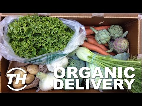 Top 3 Healthy Food Services | Organic Delivery