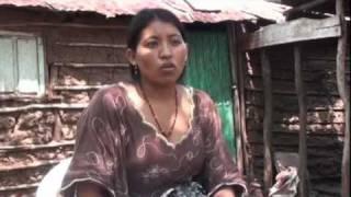 Les Femmes Autochtones et Autres Formes de Sagesse