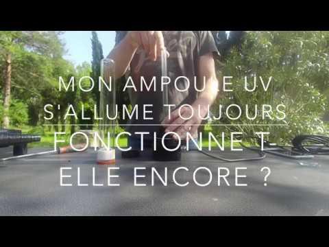 V vidéo