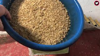 Rice Mouse Trap/How to make a Mouse Trap homemade with Water Bottle/Saving a lot of Rat/Tip TRAP