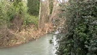 Bajo los puentes del rio San Juan
