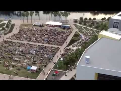 The Florida Orchestra Pops In The Park 2104