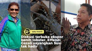 Diskusi ekspor benih lobster, Effendi Gaza sayangkan Susi tak ada