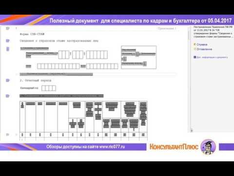 Новые формы отчетности по персонифицированному учету