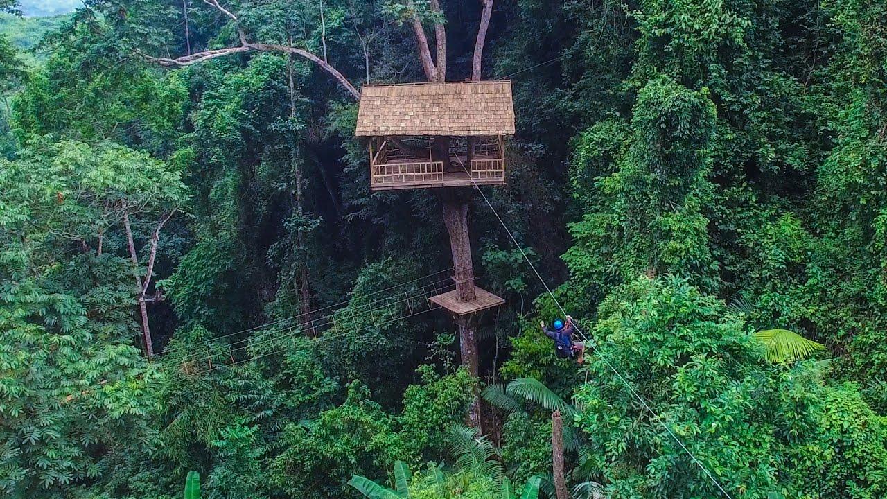 Chambre Jungle Fly : Nongkhiaw jungle fly youtube