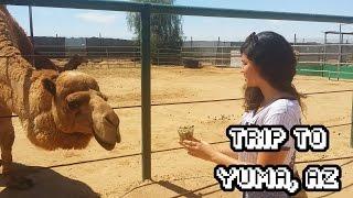 Vlog: Yuma, Arizona