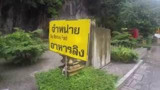 Krabi: Jungle Trek Tour
