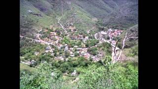 La azucena - Los Jilgueros de Atarjea, Guanajuato