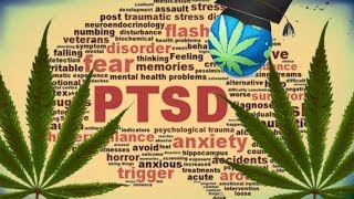 Cannabis & PTSD - Why Its Such A Great Treatment Option