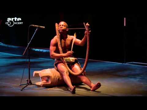 Chants et danses des pygmées Aka du Congo au musée du quai Branly   ARTE Concert2