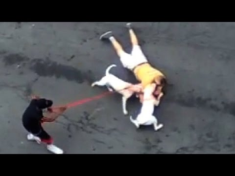 Woman Sics Pit Bulls on Man in Video