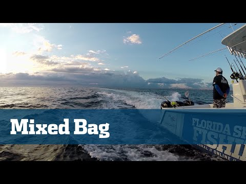 Mixed Bag Wahoo Tilefish Sailfish - Florida Sport Fishing TV