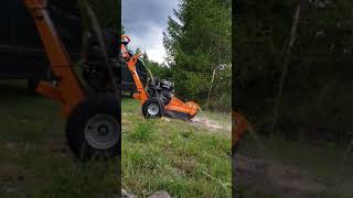 Power King Stump Grinder in Action