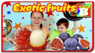 Fructe exotice vs Fructe Autohtone.  Care sunt mai gustoase?  Bogdans`s Show
