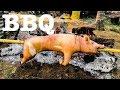 Barbecue Pork - GRAPHIC VIDEO - Pig Slaughter, Videoke, Beer, & Bad Behavior UNCENSORED!