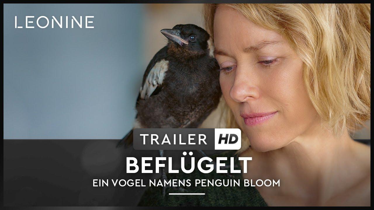 Beflügelt - Ein Vogel namens Penguin Bloom - Trailer (deutsch/german; FSK 0)