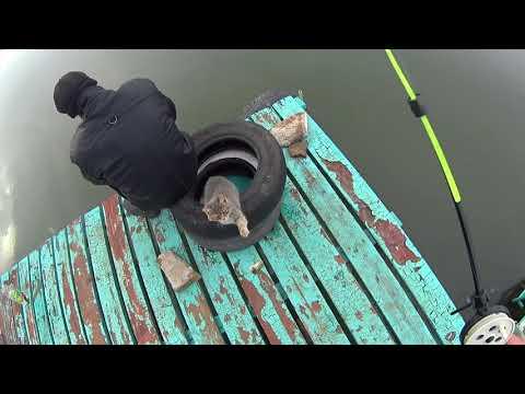 видео: Когда хочется на зимнюю рыбалку а льда всё нет (Дневник рыболова)