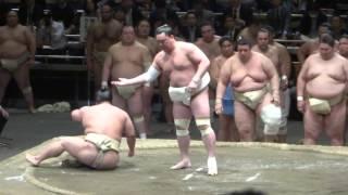20160429 大相撲横綱審議委員会稽古総見 横綱日馬富士.