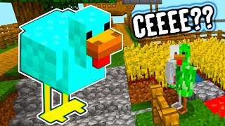 Gaina DIAMANT Din MINECRAFT !!