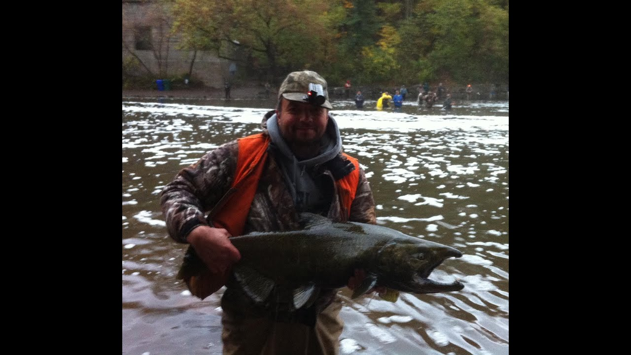 King salmon fishing video new york 39 s 18 mile creek youtube for Salmon river ny fishing regulations
