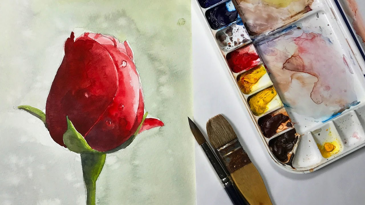 How to paint a red rose bud watercolor flower painting for How to paint a rose in watercolour