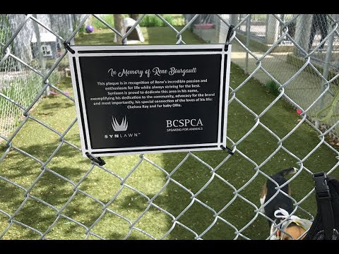 SYNLawn BCSPCA Dedication - Kelowna, BC