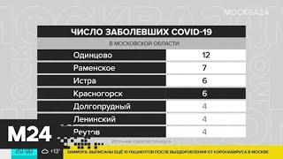 В Подмосковье 85 подтвержденных случаев коронавируса - Москва 24
