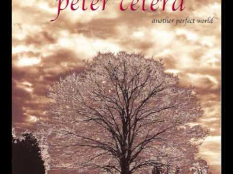 Peter Cetera - Feels Like Rain
