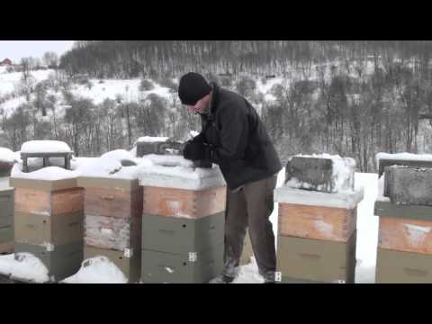 Χειμερινή επιθεώρηση στα μελίσσια
