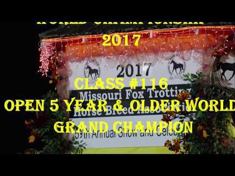 Missouri Fox Trotter Championship 2017 WGC 5+ Open