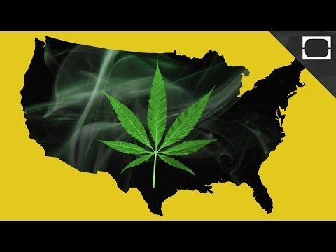 What Are the Real Effects of Legalizing Weed?