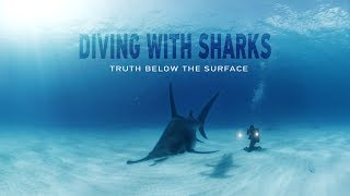 GoPro VR: Diving with Sharks - Truth Below the Surface thumbnail