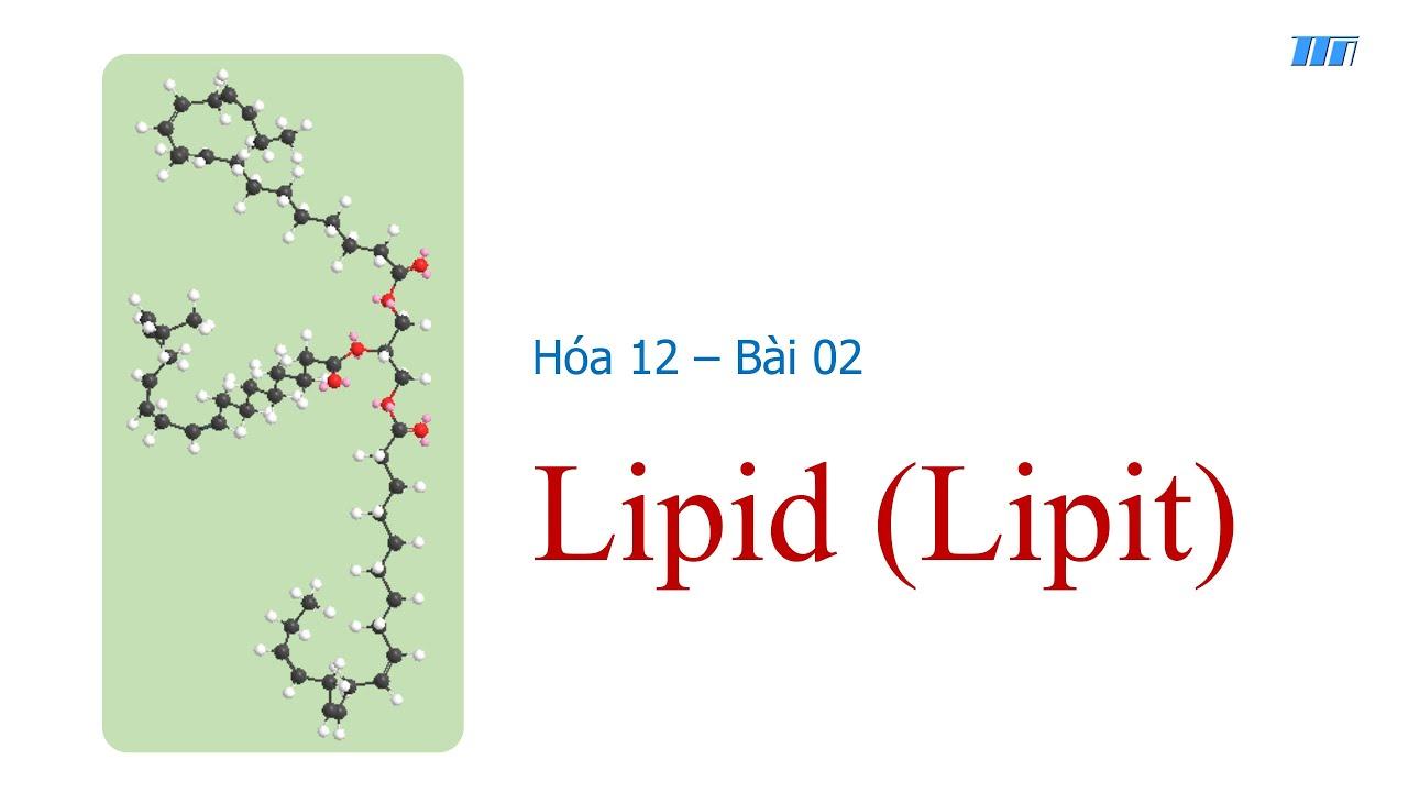 Hóa 12.Bài 02: Lipit (Lipid)