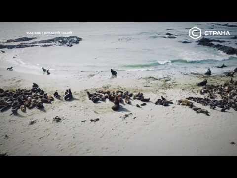 Берингово море | Спецпроект | Телеканал «Страна»