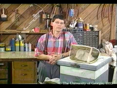 Honey Bees And Beekeeping 2.1: Bee Biology And Equipment