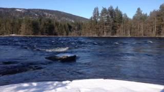 Byglandsfjord  In Norway's Cold River Otra
