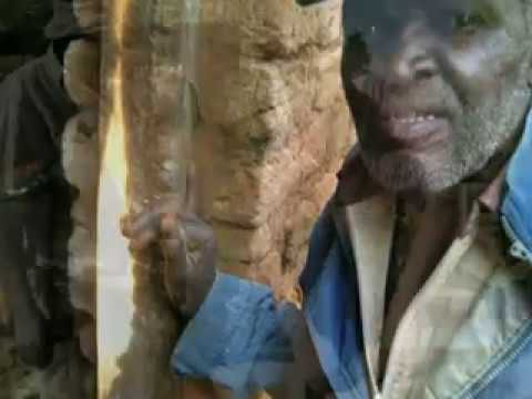 Africa's 'Power Within': A Rural Tanzania Experience.mp4
